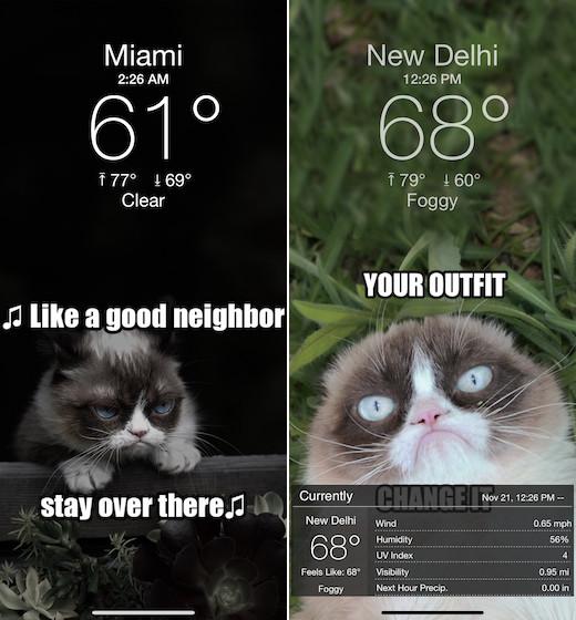 Grumpy Cat es Gracioso Tiempo