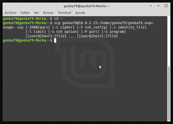 inportar config open vpn