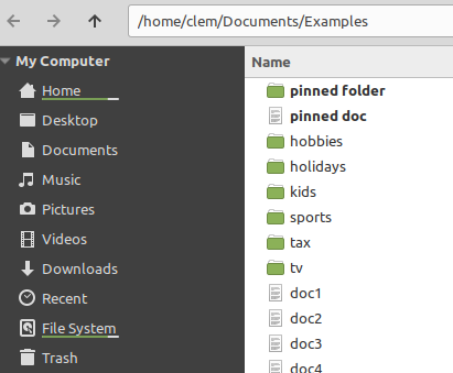 pin file in nemo on linux mint