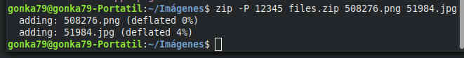 zip password